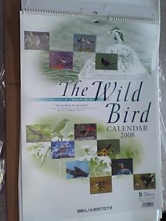 Birdcalender2008