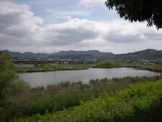 Koubo20100516_4