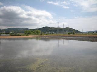 Koubo20100516_6