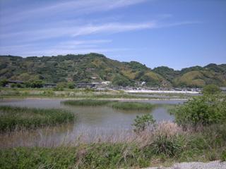 Koubo20110515_6